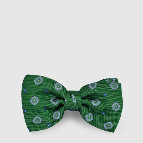 Silk papillon with green background