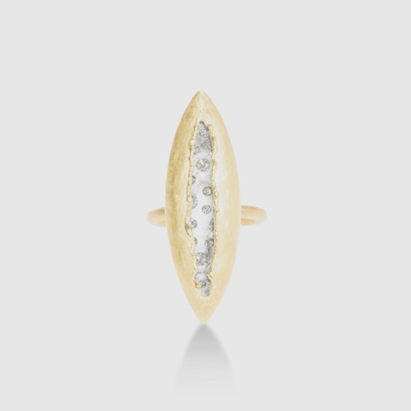Ring in 18kt yellow and white gold